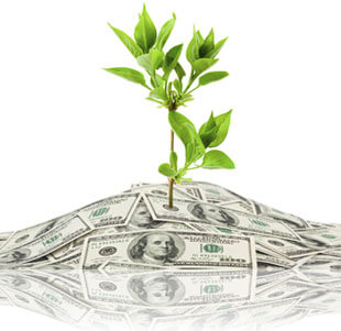 Plant growing out of money, Fishbowl Inventory Blog